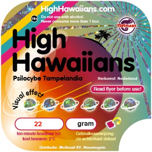 High Hawaiians Magic Truffles