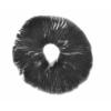 Burma Psilocybe Cubensis Spore